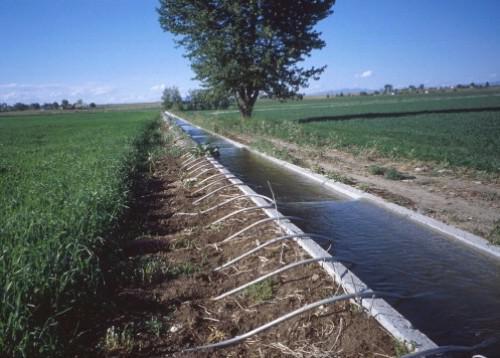 2210-14446-kenya-trocaire-finance-un-projet-d-irrigation-de-20-millions-de-shillings-dans-le-comte-de-mbeere_L