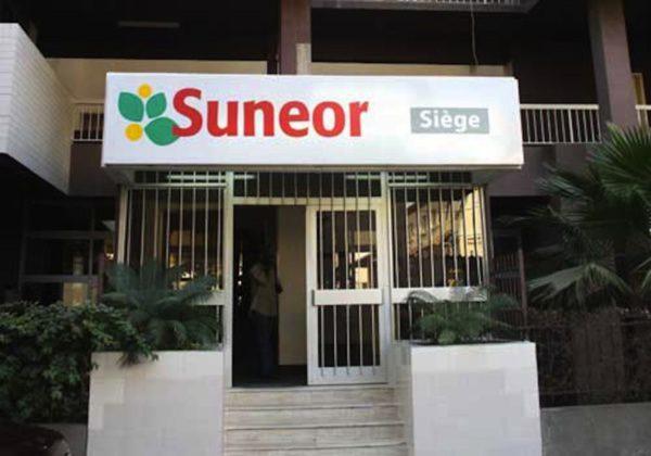 suneor