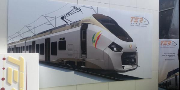 ter-660x330