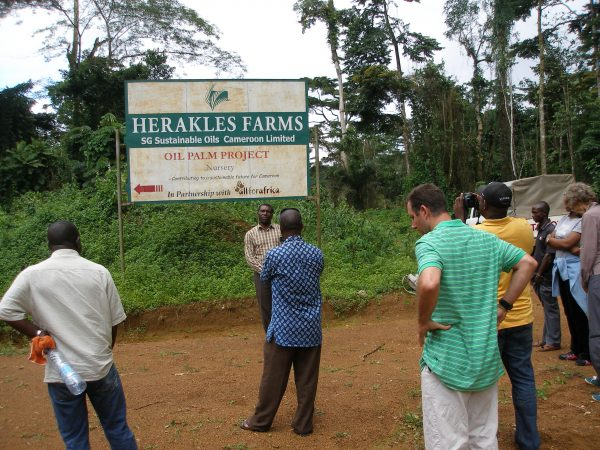 Lancée il y a quelques mois par les fermiers du sud-ouest du pays, près de la ville de Kumba, le texte a recueilli 180 000 signatures.