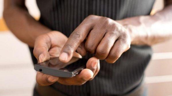 free_roaming_afrique