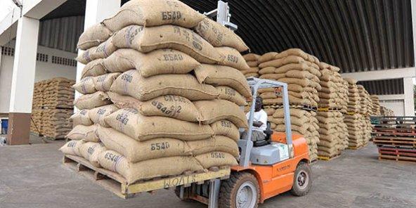 Bolloré inaugure un nouveau magasin d'entreposage de cacao — Côte d'Ivoire